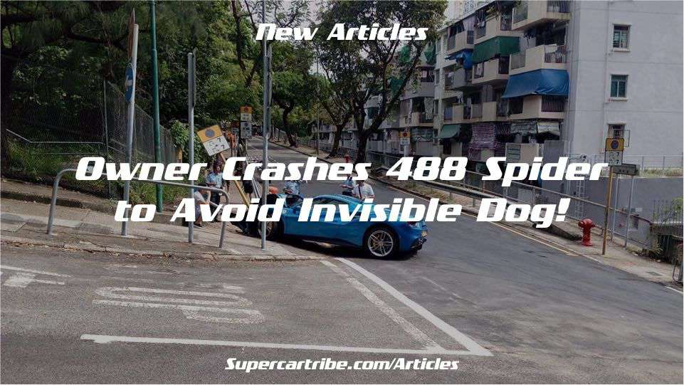 Owner crashes 488 Spider to avoid invisible dog!
